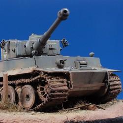 Tiger-48-106i